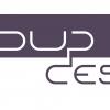 Logo : loup design