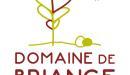 Le Domaine de Briange : l'identité d'un camping nature et atypique
