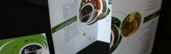 Design graphique plaquette corporate